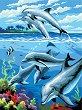 Рисуване по номера с акрилни бои - Делфини - Комплект за картина с размери 22 x 30 cm -
