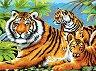 Рисуване по номера с акрилни бои - Тигри - Комплект за картина с размери 39 x 30 cm -