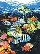 Рисуване по номера с акрилни бои - Океански дълбини - Комплект за картина с размери 23 x 30 cm -