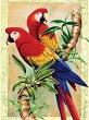 Рисуване по номера с акрилни бои - Папагали