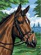 Рисуване по номера с акрилни бои - Кон - Комплект за картина с размери 23 x 30 cm