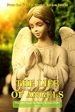The life of angels : From the Word of Beinsa Douno -