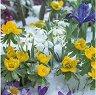Салфетки за декупаж - Цветя в снега - Пакет от 20 броя -