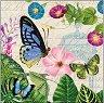 Салфетки за декупаж - Царството на пеперудите - Пакет от 20 броя -