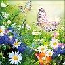 Салфетки за декупаж - Полски цветя - Пакет от 20 броя -