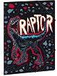 Папка с ластик - Raptor - Формат A4 -