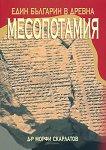 Един българин в Древна Месопотамия - книга