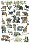 Wild Animals - стенно учебно табло на английски език - 52 x 77 cm -