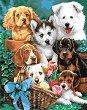 Рисуване по номера с акрилни бои - Кучета