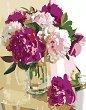 Рисуване по номера с акрилни бои - Розови божури