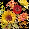 Салфетки за декупаж - Летни цветя на черен фон - Пакет от 20 броя -
