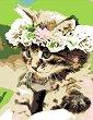 Рисуване по номера с акрилни бои - Коте