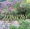 Tryavna -