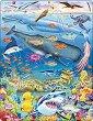 Морското дъно - Пъзел в картонена подложка -