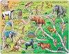 Еволюция - Образователен пъзел в картонена подложка -