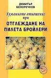 Хуманното отношение при отглеждане на пилета бройлери -