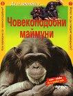 Да се запознаем с... Човекоподобни маймуни -