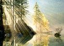 """Сутрешна светлина - Колекция """"Magic Forest"""" -"""