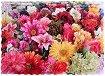 Amazing Flowers - Ръчно изработен дървен пъзел на 3 нива -