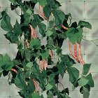 Мрежа за поддържане на растения и зеленчуци - Flora -