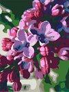 Рисуване по номера с акрилни бои - Люляк - Комплект за картина с размери 35 x 45 cm -