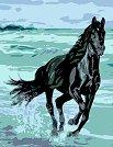 Рисуване по номера с акрилни бои - Кон на брега - Комплект за картина с размери 35 x 45 cm -