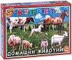 """Домашни животни - 12 кубчета от серията """"Приложна игра"""" -"""