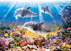 Делфини -