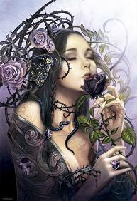 Среднощната роза -