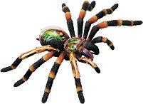 Сглобяем анатомичен модел на тарантула -