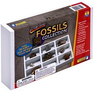 """Вкаменелости - Играчка от серията """"Geo Safari"""" - играчка"""