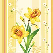 Салфетки за декупаж - Нарциси - Пакет от 20 броя