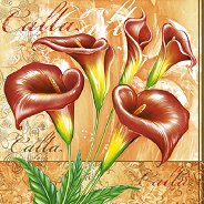 Салфетки - Калии - Пакет от 20 броя