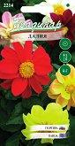"""Семена от Далия - Опаковка от 0.2 g от серия """"Градинар: Цветя"""""""