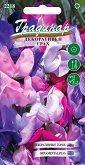 """Семена от Декоративен грах - Опаковка от 1 g от серия """"Градинар: Цветя"""""""