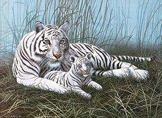 Рисуване по номера с акрилни бои - Бели тигри - Комплект за картина с размери 39 x 30 cm