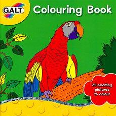 Galt: Папагал - книжка за оцветяване : Parrot - Colouring Book -