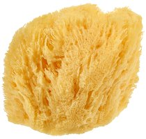 Естествена коралова гъба за лице и тяло - сапун