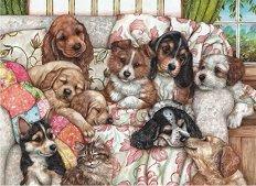 Кученца - Деби Куук (Debbie Cook) -
