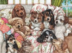 Кученца -