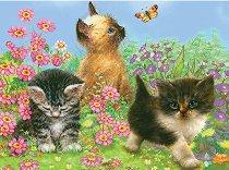 Нарисувай сам картина - Котенца - Творчески комплект с цветни моливи - образователен комплект