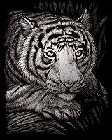 Създай сам сребриста гравюра - Бял тигър - играчка