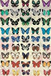 Декупажна хартия - Пеперуди 171