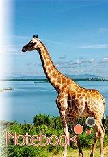 Ученическа тетрадка - Жираф - Формат A5 -