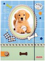 """Папка с ластик - Кученце с топка - Формат A4 от серията """"Pretty Pets"""""""