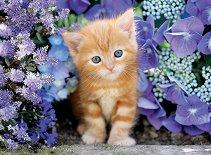 Рижаво коте сред лилави цветя - пъзел