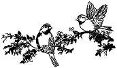 Гумен печат - Клон с птици - Размери 7 x 11 cm - печат