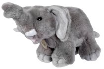 Слонче -