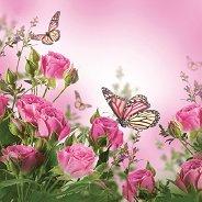Салфетки за декупаж - Рози и пеперуди - Пакет от 20 броя