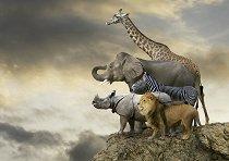Животни на ръба на пропастта -
